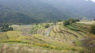 香川(4) 小豆島観光(中山の棚田・エンジェルロード)&高松へ