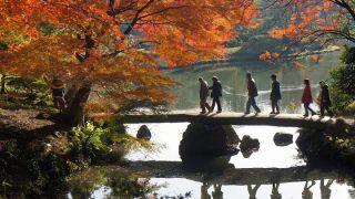 皇居乾通り&都内庭園の紅葉めぐり