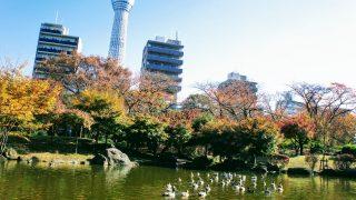 牛嶋神社&日本庭園 in 隅田公園