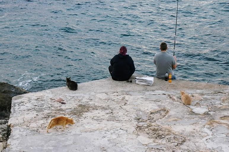 マルタ・スリーマの猫と釣り人